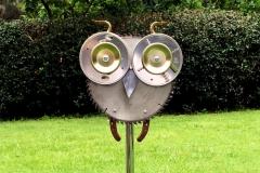 owl-51-1